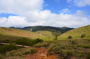 horton-plains-worlds-end-sri-lanka-mysrilankatravel-6