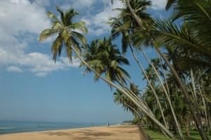 reasons-beach-sri-lanka-mysrilankatravel