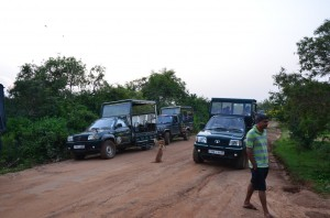 yala-national-park-jeep-safary-sri-lanka-mysrilankatravel