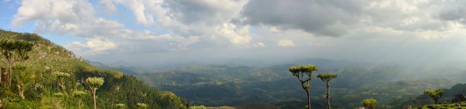 nuwaraeliya-srilanka-teaplant-panorama-mysrilankatravel
